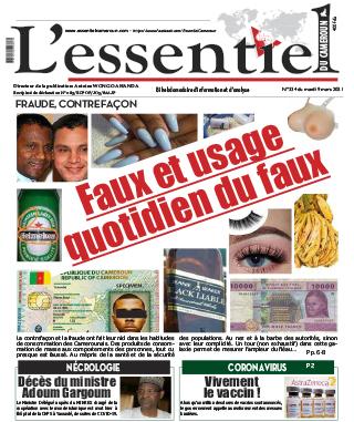Cover L'Essentiel du Cameroun - 334
