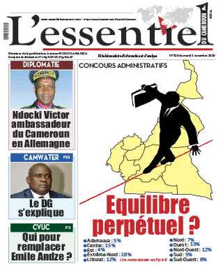 Cover L'Essentiel du Cameroun - 320