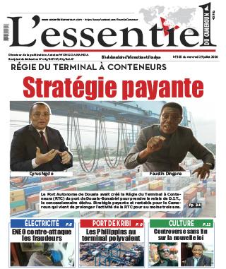Cover L'Essentiel du Cameroun - 305